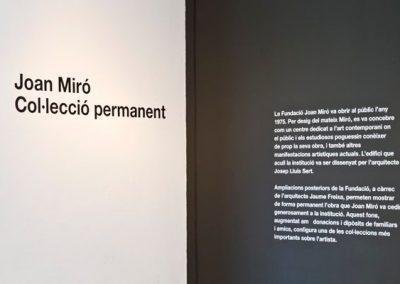 COL·LECCIÓ PERMANENT