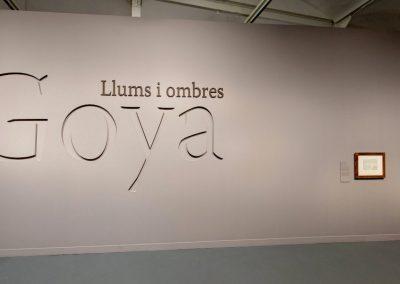GOYA: LLUMS I OMBRES